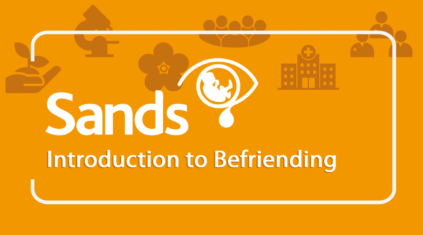 Introduction to befriending banner with Sands logo