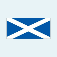 scottish stillbirth working group