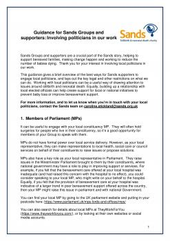 Guidance for Sands Groups and supporters: Involving politicians in our work
