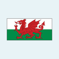 Welsh National Stillbirth Working Group​​